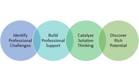 identify professional challenges, build professional support, catalyze solution thinking, discover rich potential